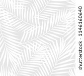 summer tropical palm tree... | Shutterstock .eps vector #1146160640