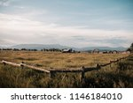 wyoming plains at mormon row in ... | Shutterstock . vector #1146184010