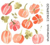 watercolor collection of hand... | Shutterstock . vector #1146189620