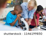 multiethnic pupils looking... | Shutterstock . vector #1146199850