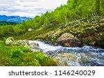 mountain forest river landscape....   Shutterstock . vector #1146240029