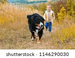 boy running around with big dog ... | Shutterstock . vector #1146290030