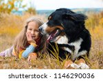 girl with dog berner sennenhund ... | Shutterstock . vector #1146290036