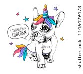 puppy bulldog in a bright... | Shutterstock .eps vector #1146429473