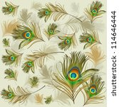 texture with peacock feathers   Shutterstock .eps vector #114646444