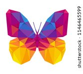 geometric butterfly with many... | Shutterstock .eps vector #1146465599
