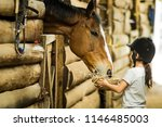 Little Girl Feeding A Horse In...