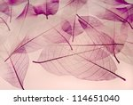 backdrop texture of colorful... | Shutterstock . vector #114651040