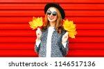 stylish happy autumn smiling... | Shutterstock . vector #1146517136