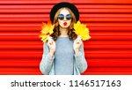 cool girl autumn portrait woman ... | Shutterstock . vector #1146517163