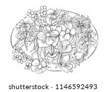 black and white hand drawn...   Shutterstock . vector #1146592493