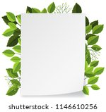 leave and nature frame concept... | Shutterstock .eps vector #1146610256