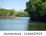 panoramic mangove forests... | Shutterstock . vector #1146652919