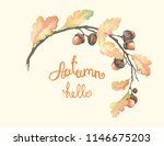 autumn beautiful frame with oak ... | Shutterstock .eps vector #1146675203
