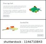 green tiger barb  swordtail...   Shutterstock .eps vector #1146710843