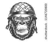serious gorilla in monochrome...   Shutterstock .eps vector #1146720800