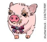 vector illustration of cute... | Shutterstock .eps vector #1146741989