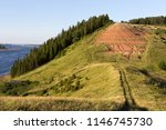 coniferous forest on the... | Shutterstock . vector #1146745730