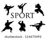martial arts silhouettes | Shutterstock .eps vector #114675493