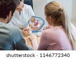 doctor in fertility clinic... | Shutterstock . vector #1146772340
