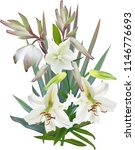illustration with light lily... | Shutterstock .eps vector #1146776693