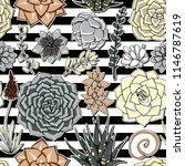succulents seamless striped... | Shutterstock .eps vector #1146787619