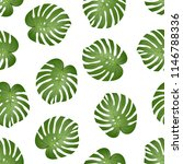 philodendron monstera leaf on... | Shutterstock .eps vector #1146788336