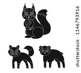 toy animals black icons in set...   Shutterstock .eps vector #1146793916