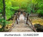 Bridge In Bright Forest....