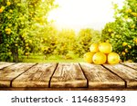 summer photo of wooden table... | Shutterstock . vector #1146835493