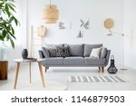 real photo of a simple living... | Shutterstock . vector #1146879503
