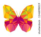 geometric butterfly with many... | Shutterstock .eps vector #1146898019