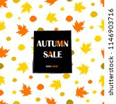 autumn sale background with... | Shutterstock .eps vector #1146903716