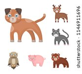 toy animals cartoon icons in... | Shutterstock . vector #1146911696