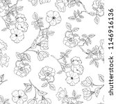 hand painted vector roses... | Shutterstock .eps vector #1146916136