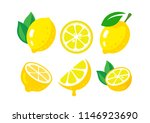 fresh lemon fruits with leaves... | Shutterstock .eps vector #1146923690