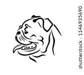 Pug Dog Face   Isolated Vector...