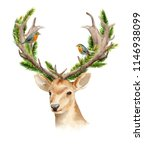 the head of a male deer with... | Shutterstock . vector #1146938099