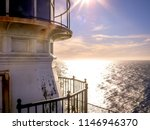 close up view of point reyes... | Shutterstock . vector #1146946370