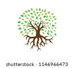 creative tree logo template ... | Shutterstock .eps vector #1146966473