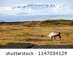 beautiful landscapes of iceland | Shutterstock . vector #1147034129