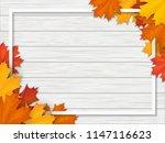 frame decorated of fallen maple ... | Shutterstock .eps vector #1147116623
