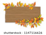 empty wooden sign with space... | Shutterstock .eps vector #1147116626