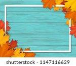white frame decorated of fallen ... | Shutterstock .eps vector #1147116629