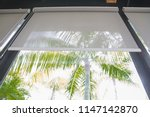 curtain or blinds roller sun... | Shutterstock . vector #1147142870