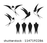 Stock vector swallow logo isolated swallow on white backgroun 1147192286