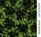 palm. pattern from tropical... | Shutterstock .eps vector #1147276199