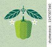 bell pepper illustration. green ... | Shutterstock .eps vector #1147307360