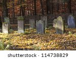 Old Jewish Cemetery In The Oak...