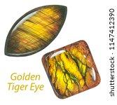 golden tiger eye. watercolor... | Shutterstock . vector #1147412390